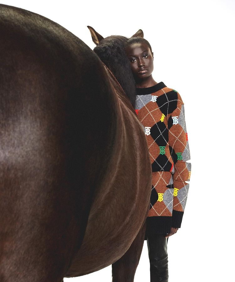 Horse Riding Trend