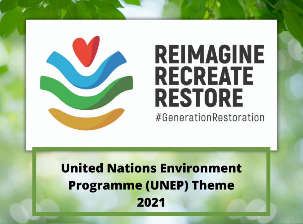 United Nations Environment Programme Theme 2021