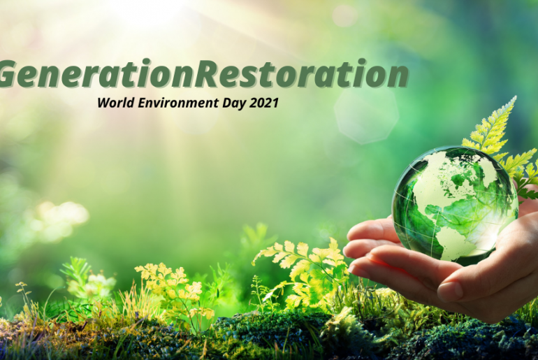 United Nations Environment Programme 2021